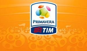 Primavera Tim logo